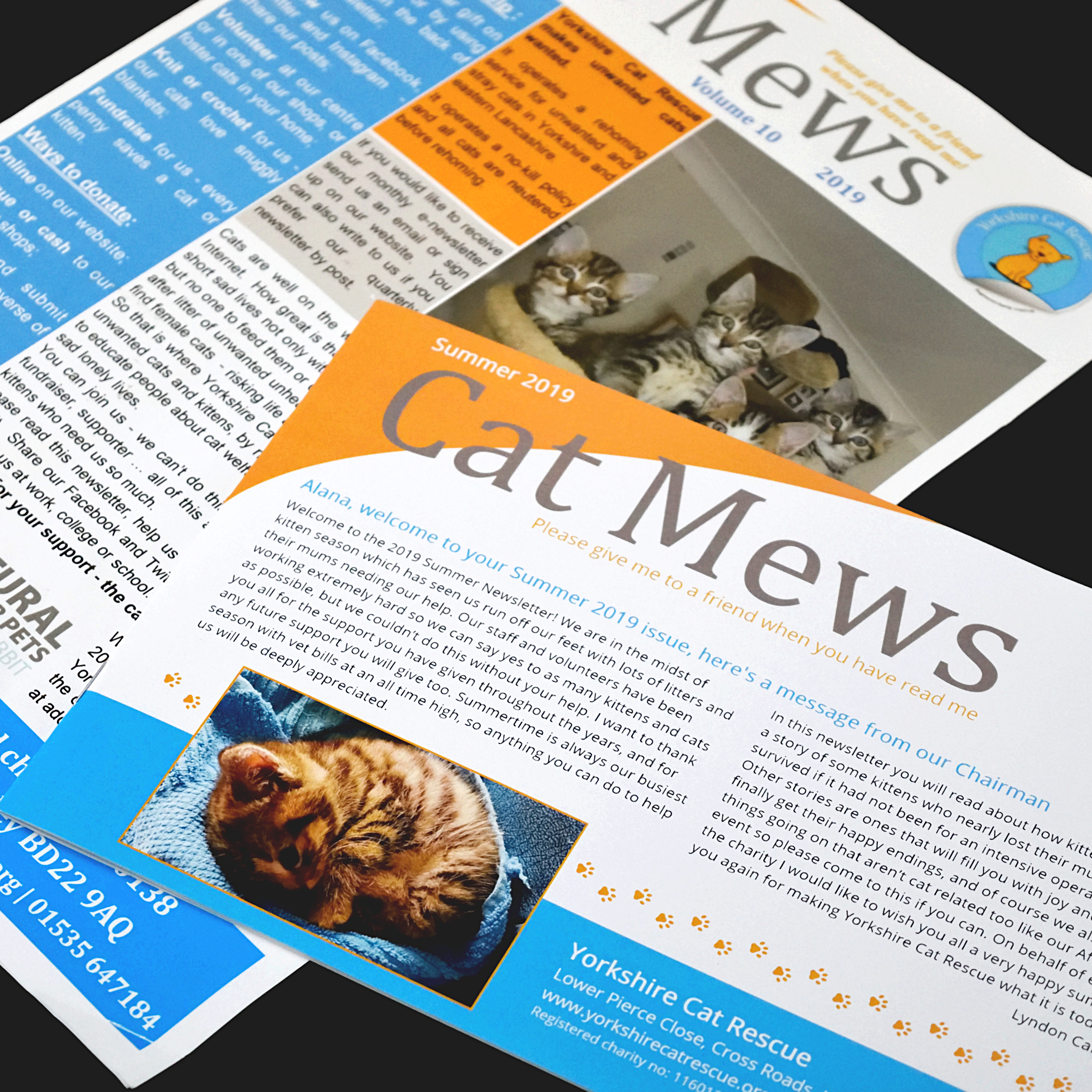 the two newsletters side by side